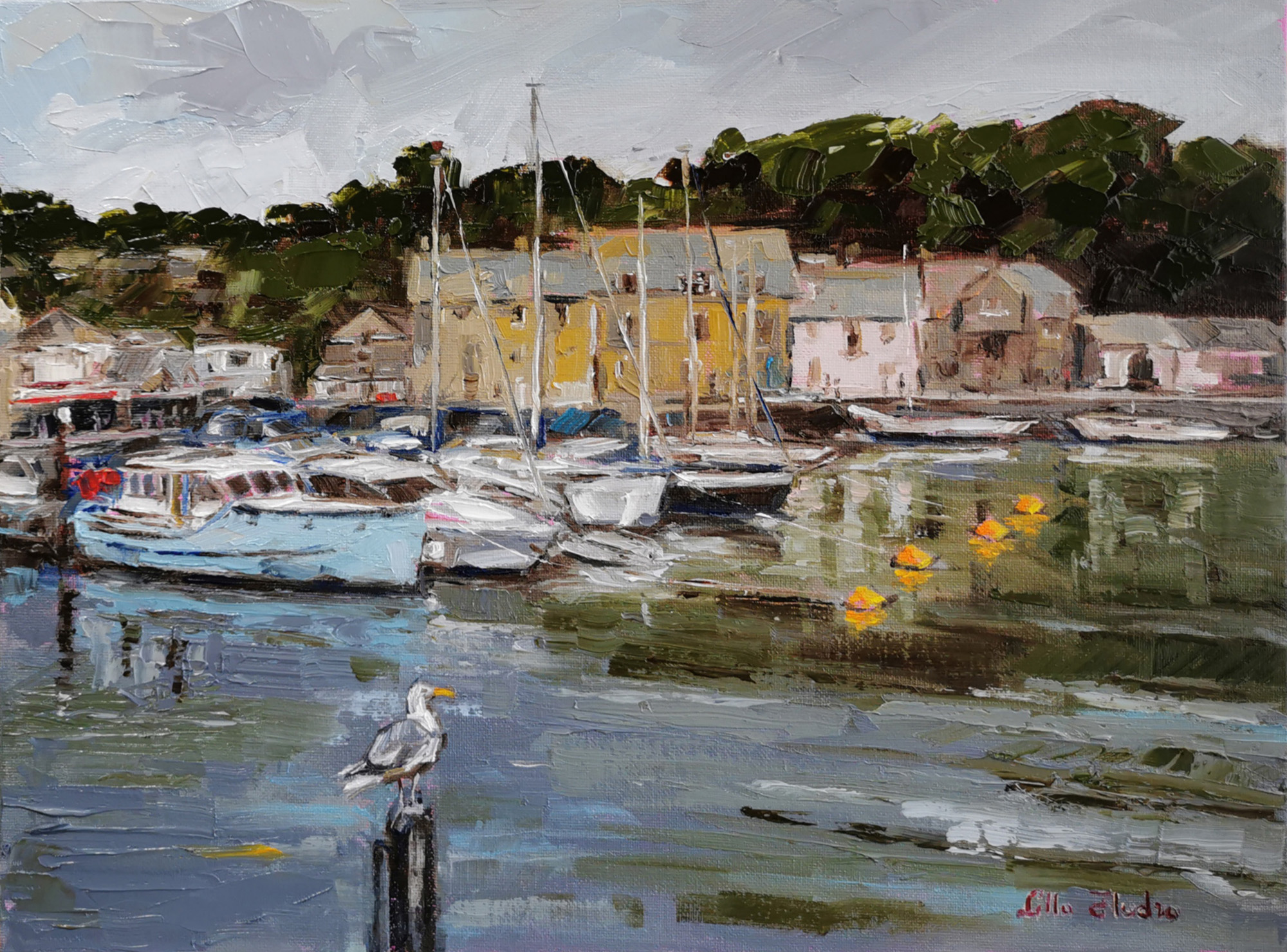 Charm of Padstow