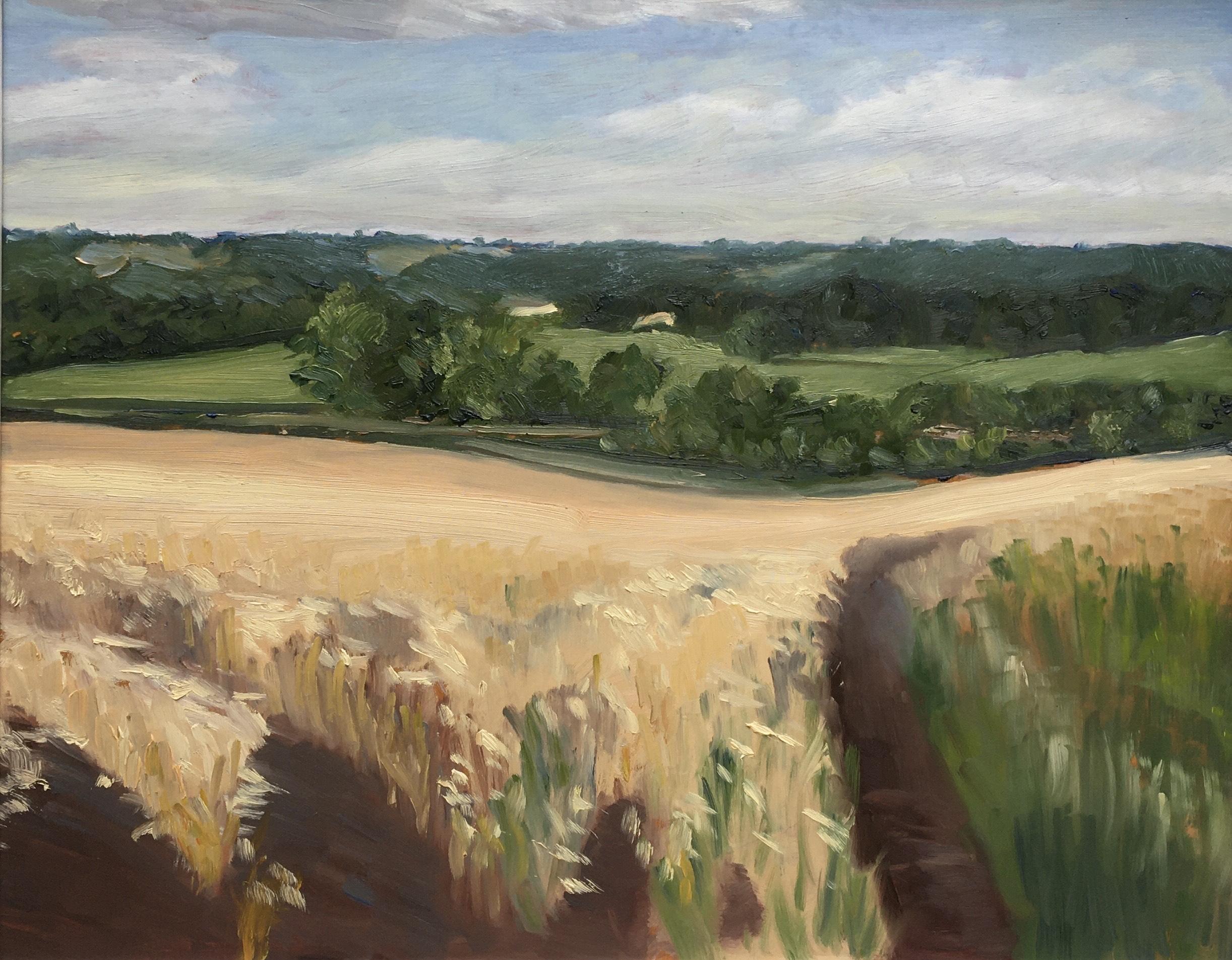 Just before the harvest, Charlbury 2020